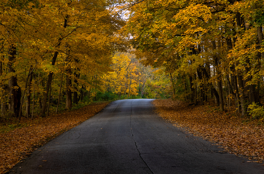 Fall Scenes in McLean County Illinois-7