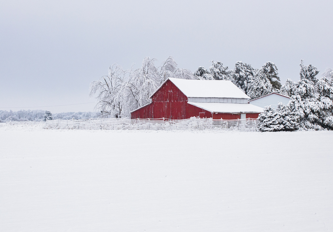 Red Barn in the Midwest Tundra