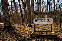 Funks Grove Maple Syrup Tap